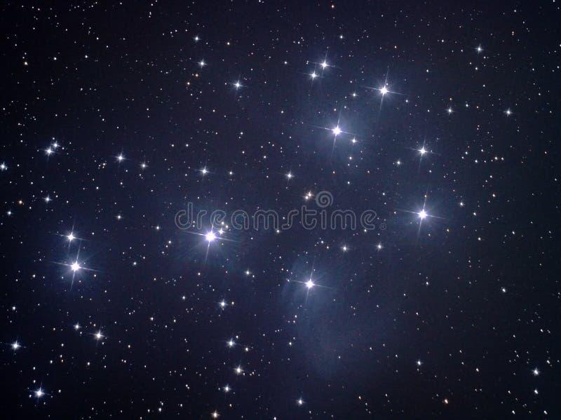 M45 - Plejades stockbild