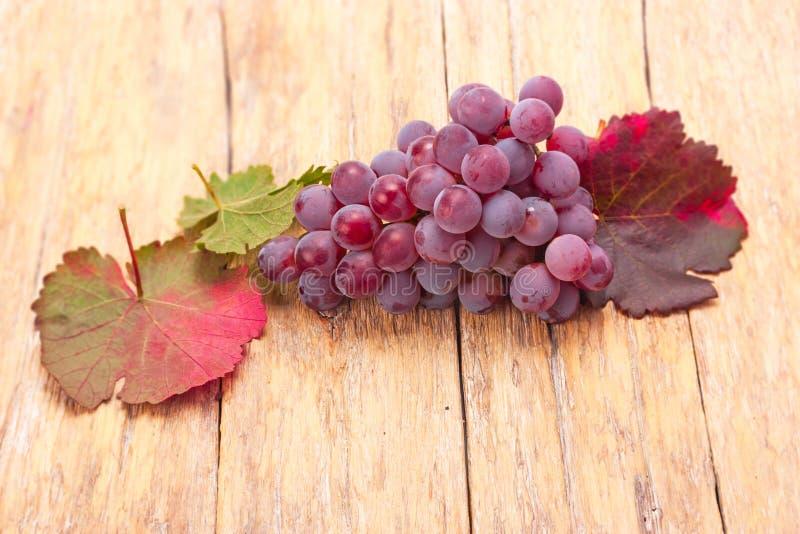 mûr rouge de raisins photo stock