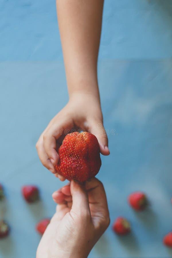 M?re donnant ? son fils une grande fraise rouge Peu gar?on prenant une fraise de la main de la maman Peu fraises sur le bleu lumi photographie stock libre de droits