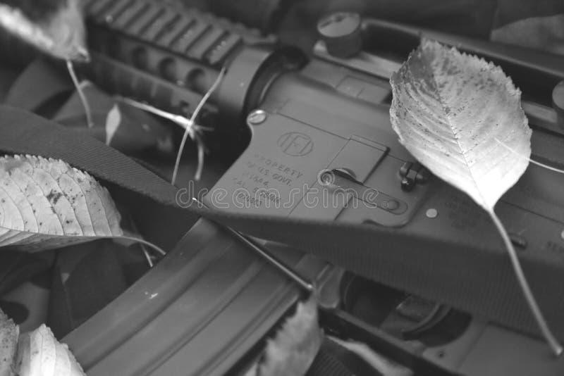 M16 rifle. USA ARMY. Militar photo royalty free stock photography