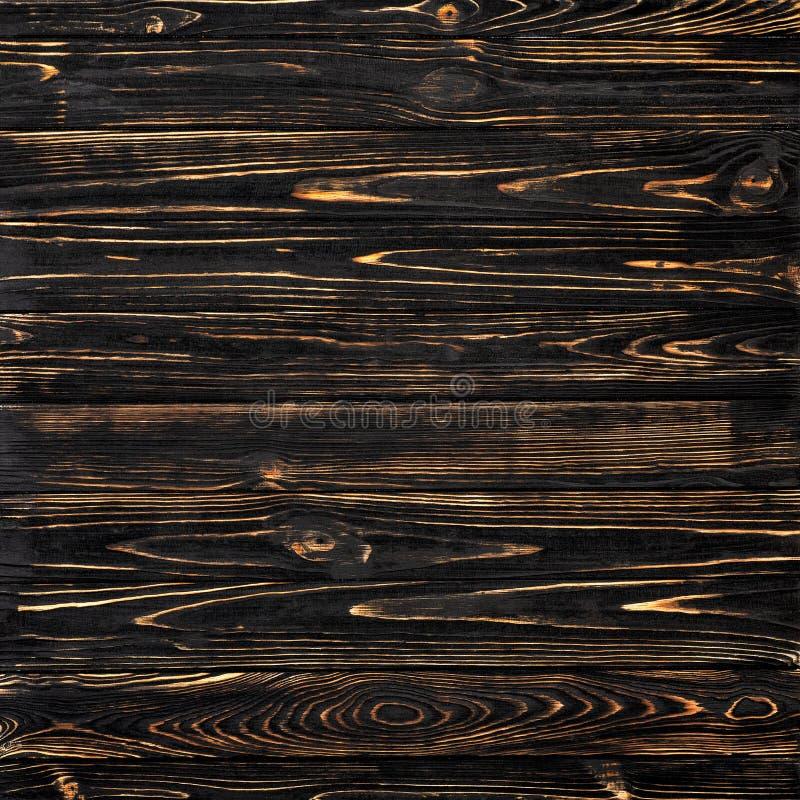 m?rkt tr? f?r bakgrund fotografering för bildbyråer
