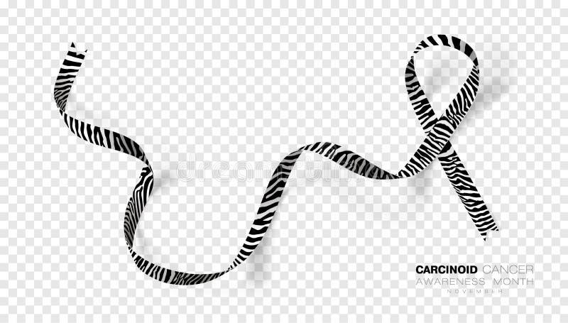 M?s Carcinoid da conscientiza??o do c?ncer Fita da cor da listra da zebra isolada no fundo transparente Molde do projeto do vetor ilustração stock