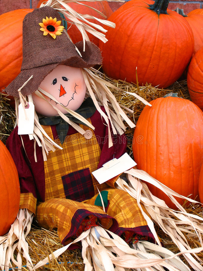M. Scarecrow stock foto's