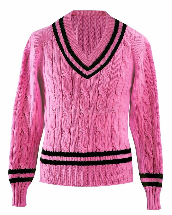 Download Męska kurtka zdjęcie stock. Obraz złożonej z wyznaczający - 28972318