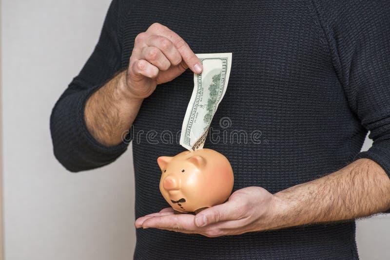 M?ska r?ka stawia dolarowego rachunek w prosi?tko banka Wręcza kładzenie pieniądze banknotu dolara w prosiątko dla ratować pienią obraz royalty free