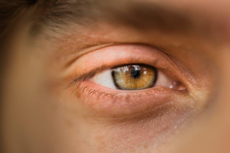 M?ski oka zako?czenie up mężczyzn spojrzenia w ramę brązu irys w makro- obraz royalty free