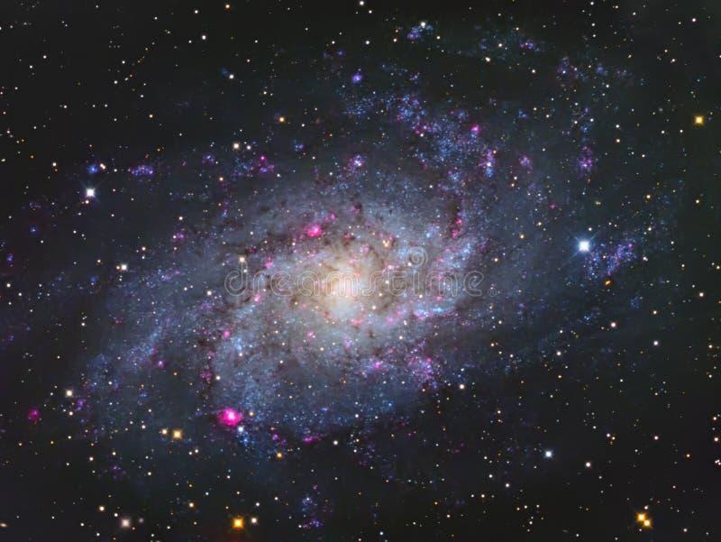 M33 Triangulum星系 图库摄影