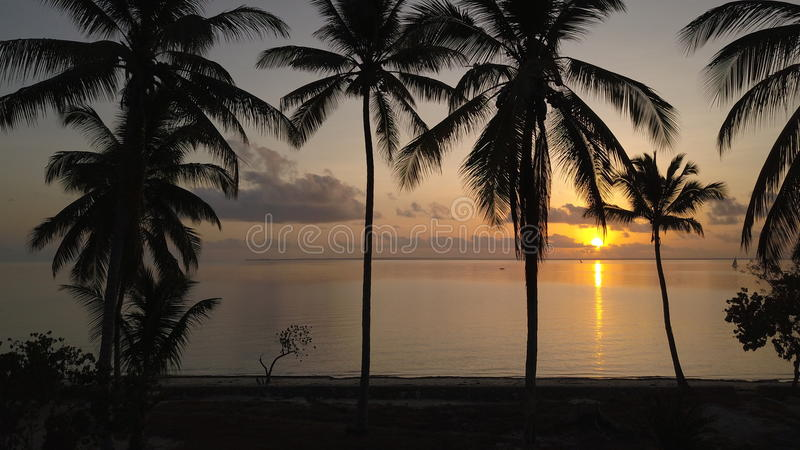 6 a.m. at Zanzibar Island royalty free stock photo