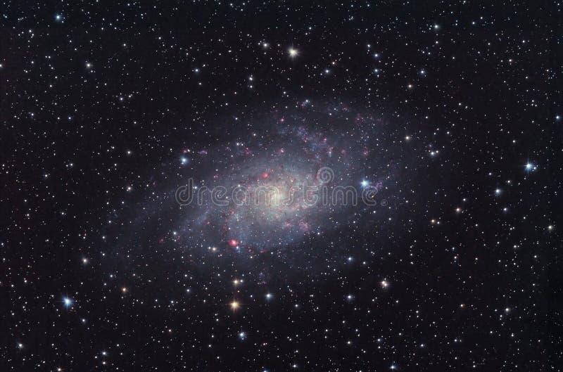 M33 Melkweg in constellatie Triangulum. stock fotografie