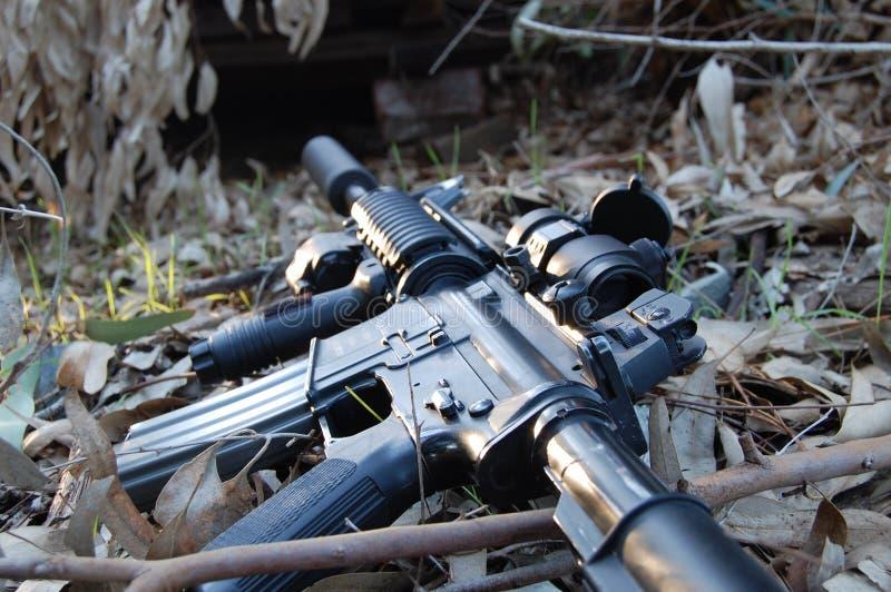 M4 in de bladeren royalty-vrije stock foto's