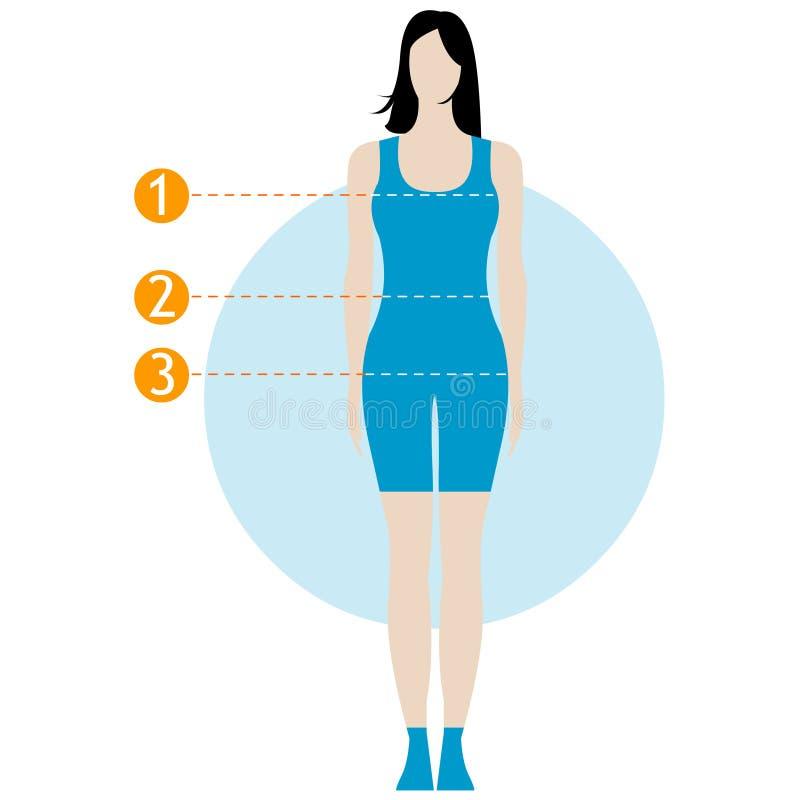 Maßdiagramm des weiblichen Körpers Zahl des Mädchens, Modell in der Unterwäsche, Badebekleidung Schablone für das Nähen, Eignung, lizenzfreie abbildung