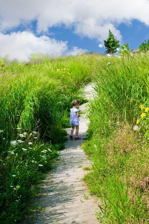 Mała dziewczynka gubjąca iść w wysokiej trawie obrazy royalty free