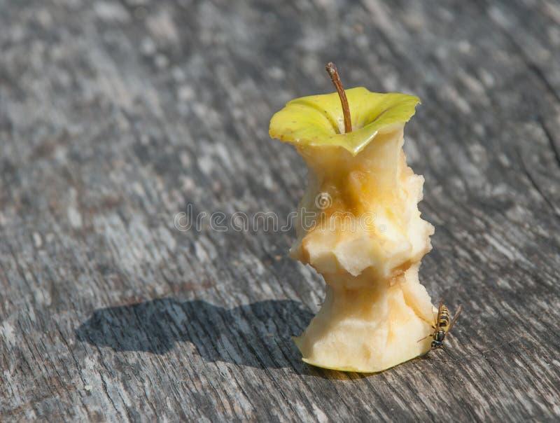 Maçã e abelha comidas metade foto de stock
