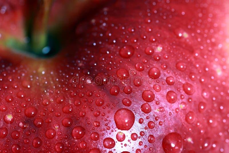 maçã fresca fotografia de stock