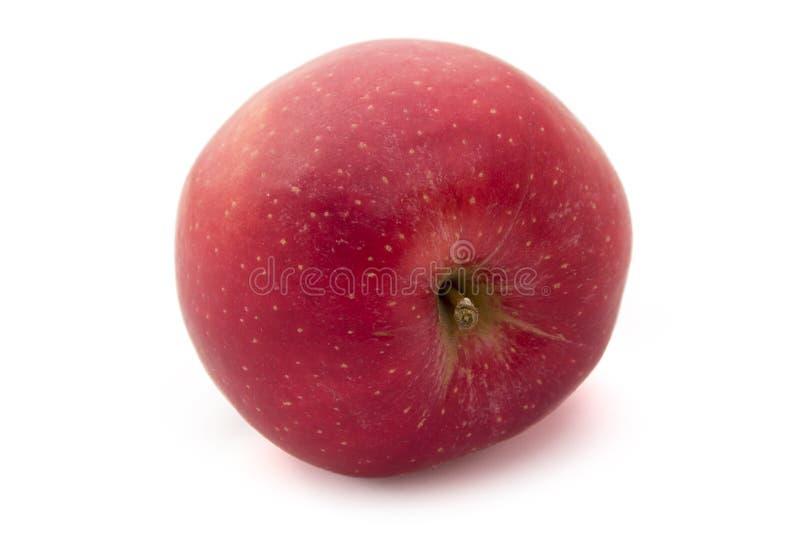 Maçã fresca vermelha isolada no fundo branco imagem de stock royalty free
