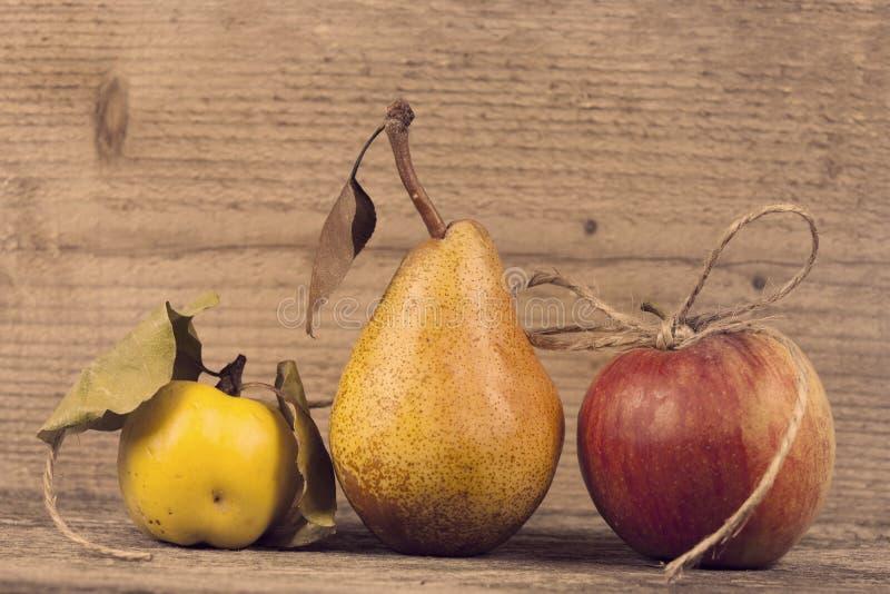 Maçã, marmelo e pera orgânicos imagens de stock