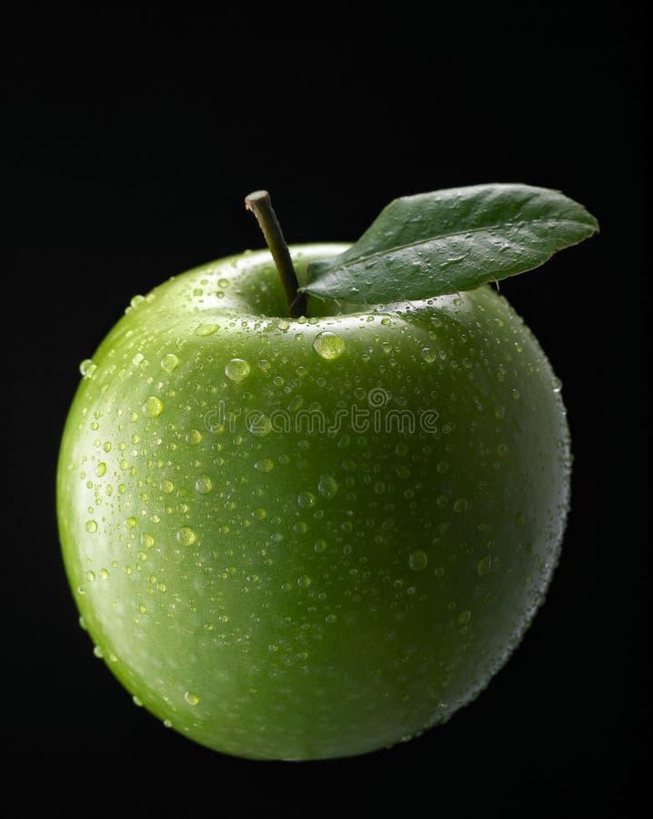 Maçã verde fotografia de stock royalty free