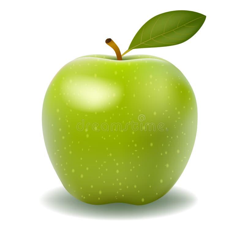 Maçã verde brilhante grande ilustração stock