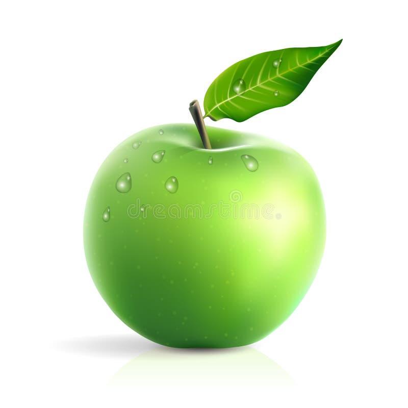 A maçã verde fresca com água deixa cair a ilustração realística do vetor isolada no branco ilustração do vetor