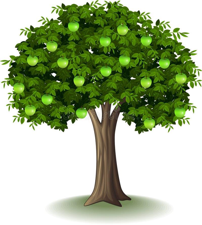 Maçã verde na árvore de maçã ilustração royalty free