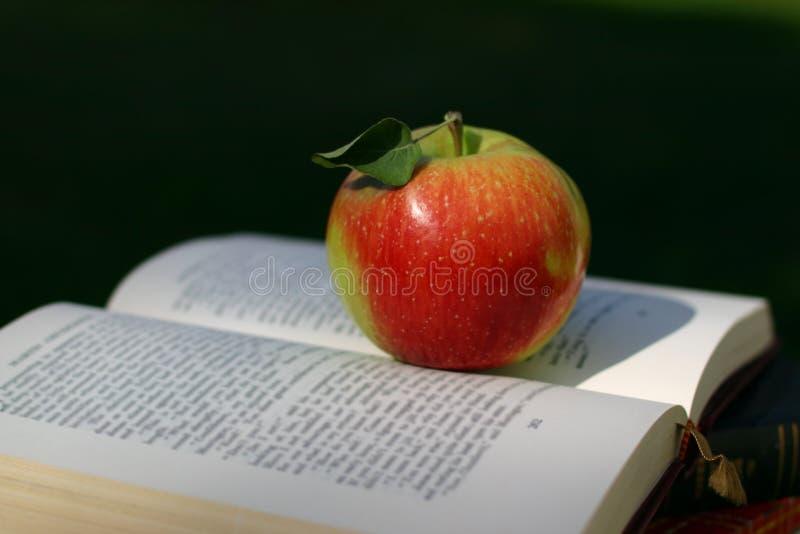 Maçã vermelha no livro fotografia de stock royalty free