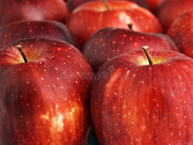 Download Maçãs foto de stock. Imagem de haste, maçã, vermelho, alimento - 100296