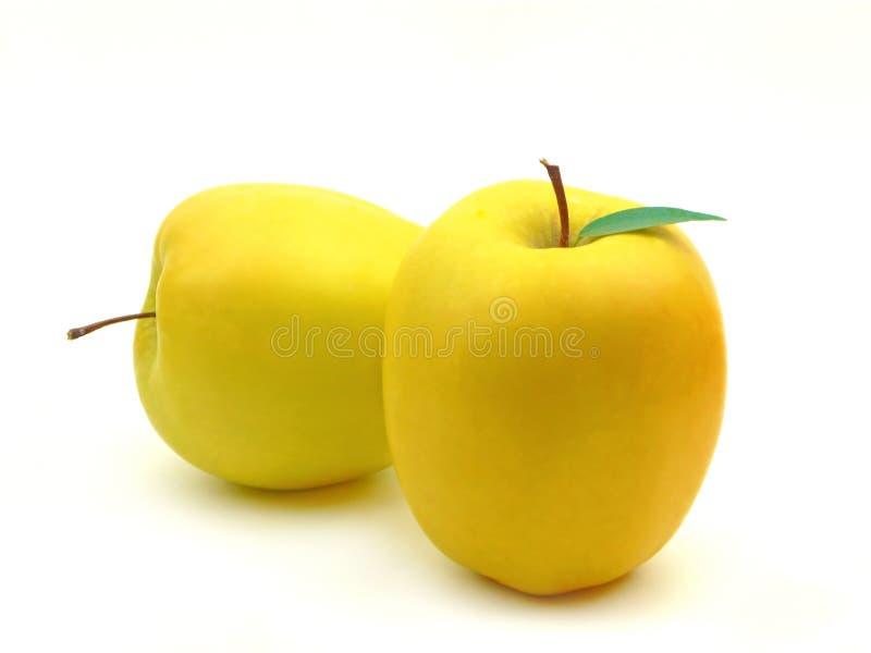 Maçãs amarelas foto de stock
