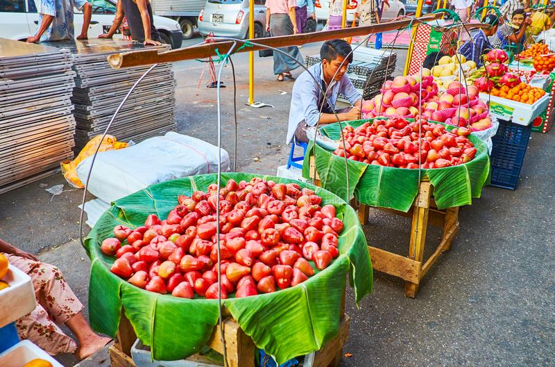 Maçãs de Rosa no mercado do bairro chinês de Yangon, Myanmar fotos de stock royalty free