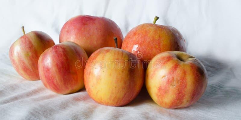 Maçãs do fruto fresco imagens de stock
