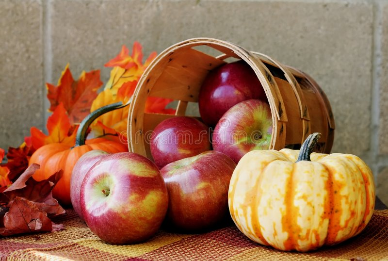 Maçãs do outono fotos de stock royalty free