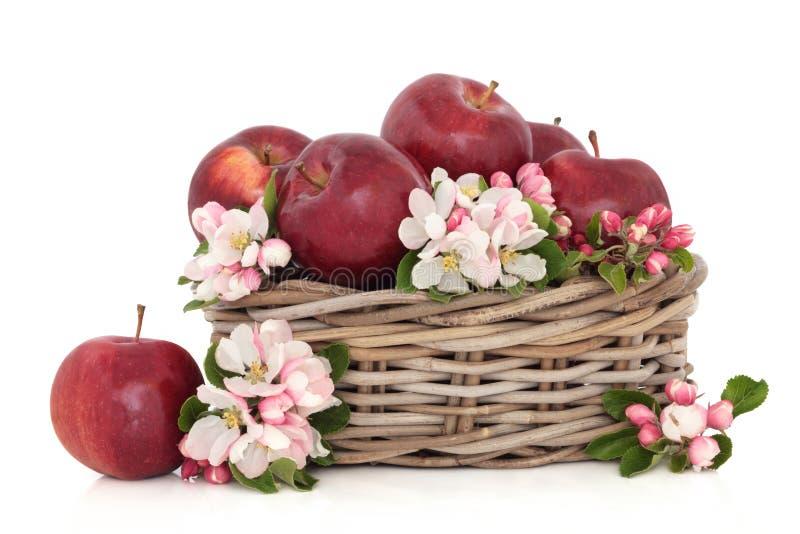 Maçãs e flor da flor imagem de stock royalty free