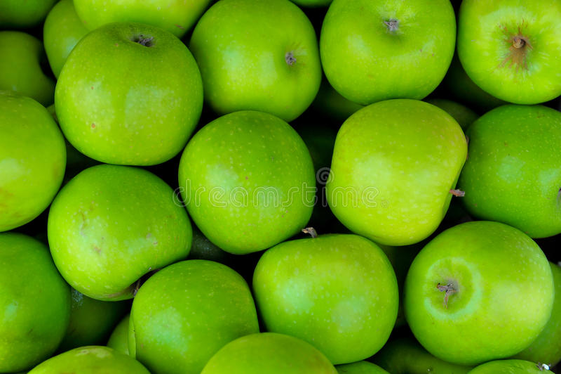 Maçãs maduras verdes foto de stock royalty free