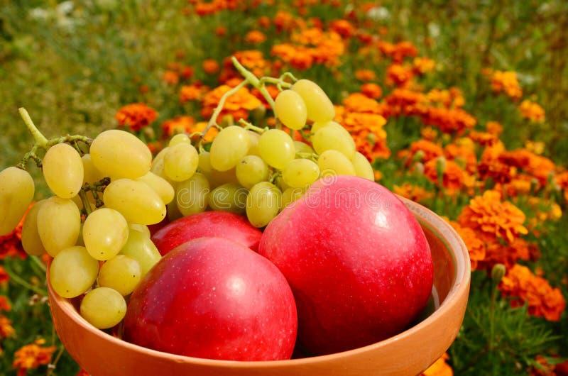 Maçãs maduras vermelhas com as uvas na placa fotografia de stock royalty free