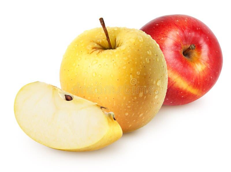 Maçãs molhadas isoladas Frutos dourados e vermelhos amarelos inteiros da maçã com a fatia isolada no branco, com trajeto de gramp fotografia de stock royalty free