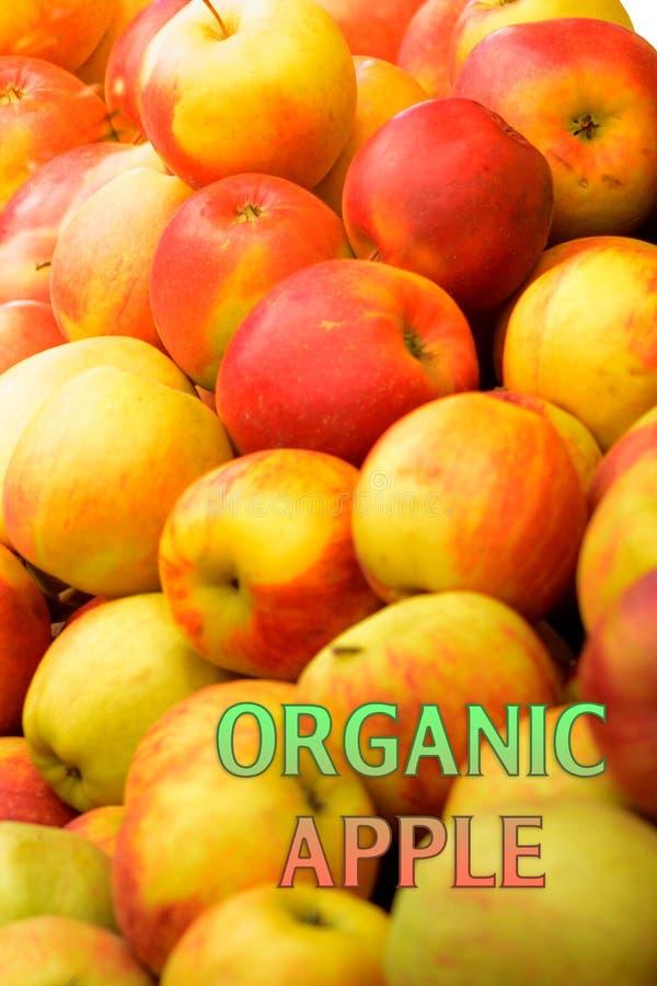 Maçãs orgânicas do jardim com a maçã orgânica do jardim da etiqueta imagens de stock
