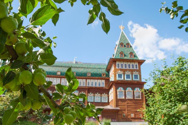 Maçãs verdes no fundo do conjunto arquitetónico de grande palácio de madeira do czar Aleksey do russo mim, Moscou imagem de stock