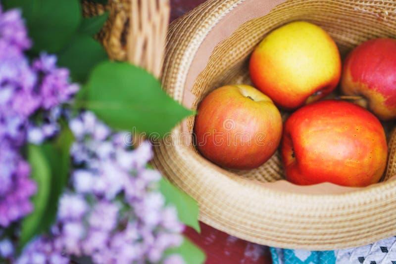 Maçãs vermelhas frescas com flores em uma cesta da palha Férias de verão na natureza fotos de stock