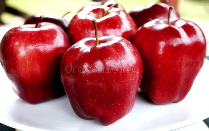 Maçãs vermelhas no prato branco fotos de stock