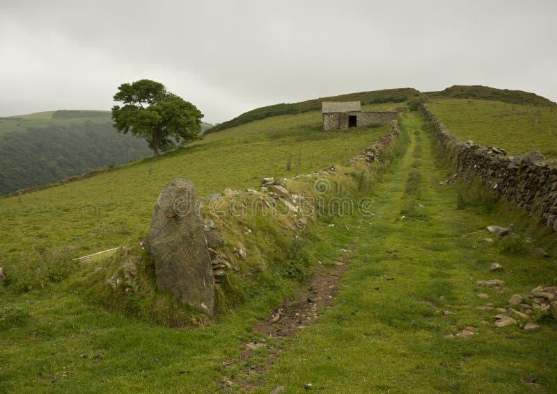 Mán tiempo en el parque nacional de Exmoor imagen de archivo