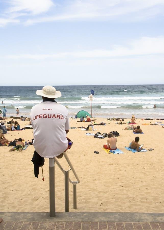 Maître nageur viril de plage images libres de droits