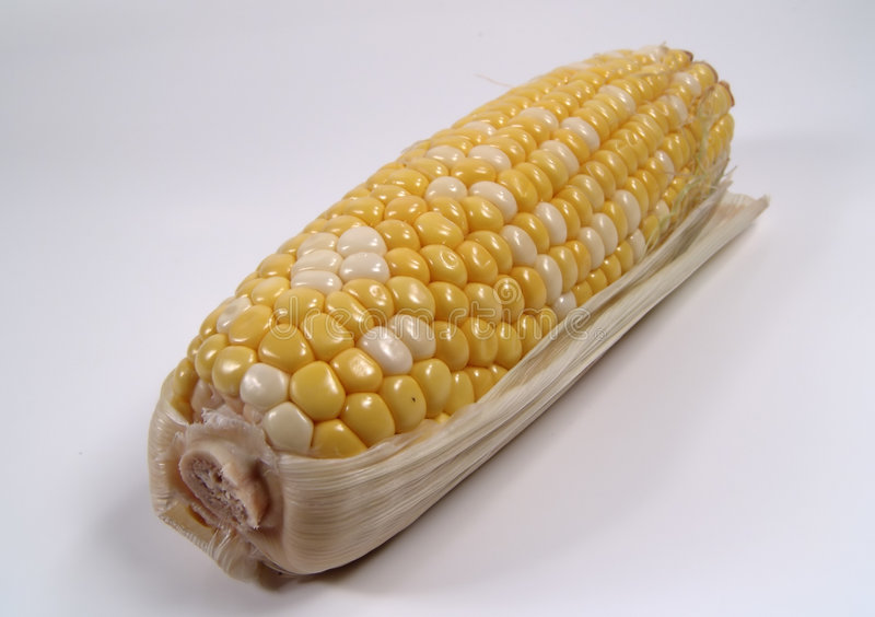Maïs 2 images stock