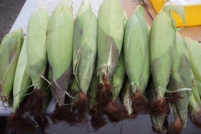 Maïs délicieux photographie stock