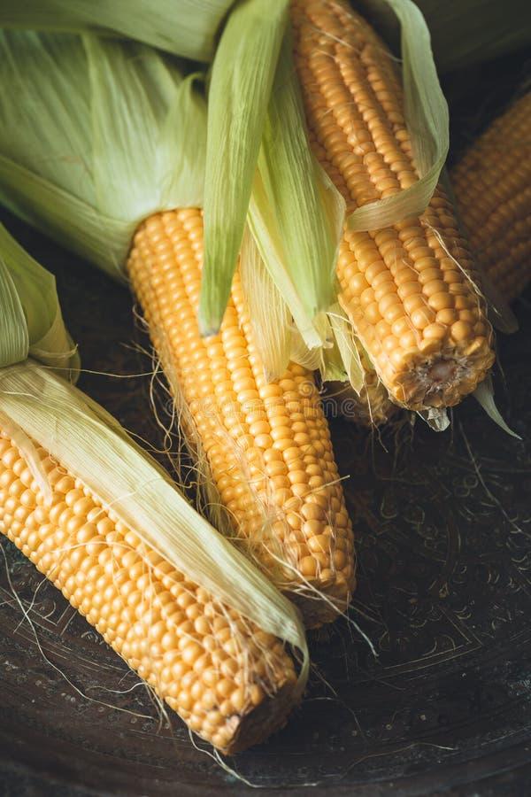 maïs d'épi frais image libre de droits