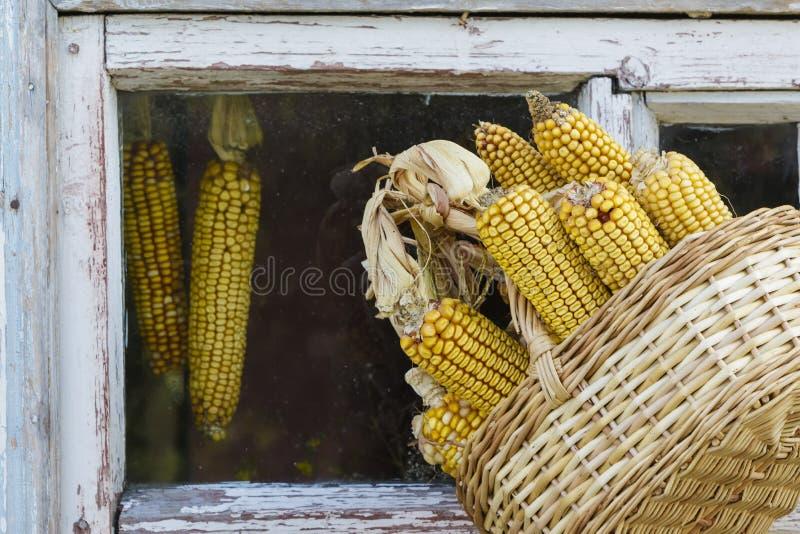 Maïs dans un panier à une vieille fenêtre photos stock