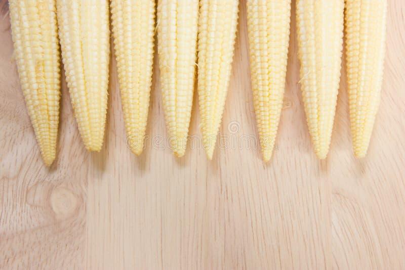 Maïs de bébé. photos stock