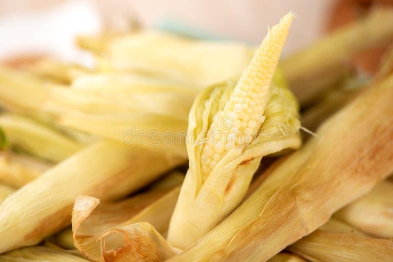 Maïs de bébé comme izakaya fait maison délicieux de rôti photos stock