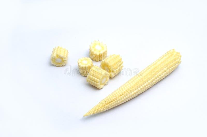 Maïs de bébé sur le fond blanc photo stock