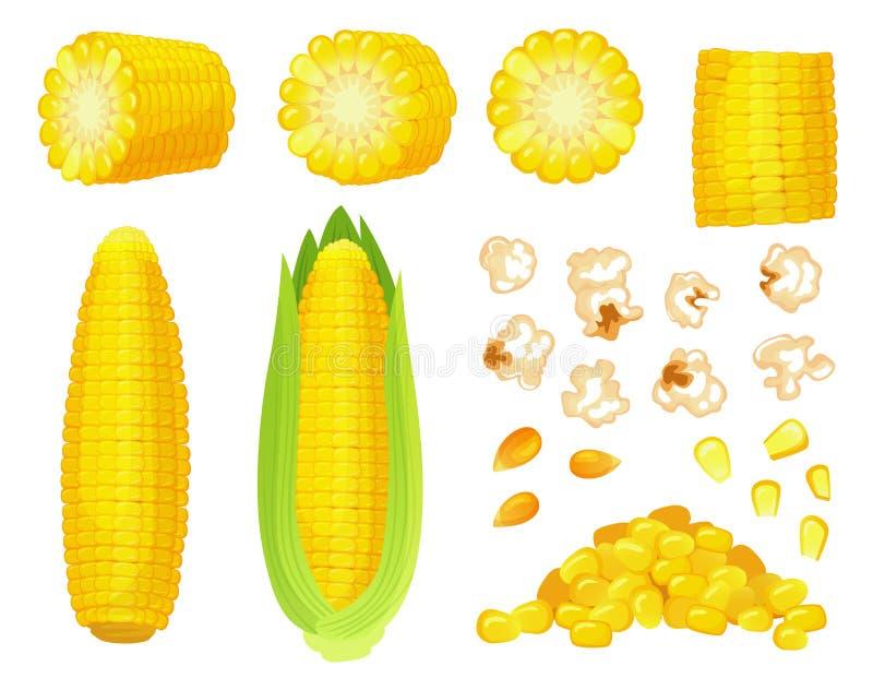 Maïs de bande dessinée Récolte d'or de maïs, grains bébêtes de maïs éclaté et maïs Épi de blé, vecteur délicieux de légumes illustration stock