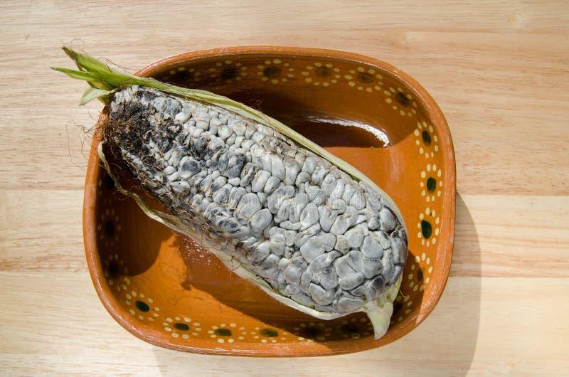 Maïs de Huitlacoche photographie stock