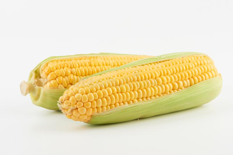 Maïs doux frais image stock